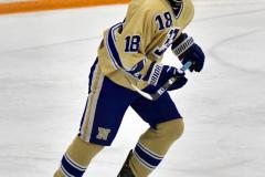 CIACT D3 Ice Hockey; #8 Newtown 7 vs. #9 Wilton 2 - Photo # 2161