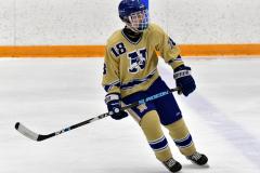 CIACT D3 Ice Hockey; #8 Newtown 7 vs. #9 Wilton 2 - Photo # 2168