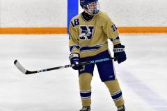CIACT D3 Ice Hockey; #8 Newtown 7 vs. #9 Wilton 2 - Photo # 2169