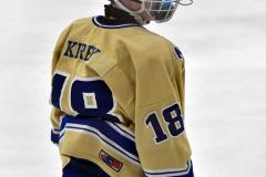 CIACT D3 Ice Hockey; #8 Newtown 7 vs. #9 Wilton 2 - Photo # 2172