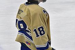 CIACT D3 Ice Hockey; #8 Newtown 7 vs. #9 Wilton 2 - Photo # 2174