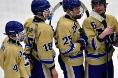 CIACT D3 Ice Hockey; #8 Newtown 7 vs. #9 Wilton 2 - Photo # 2241