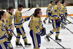 CIACT D3 Ice Hockey; #8 Newtown 7 vs. #9 Wilton 2 - Photo # 471