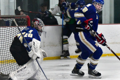 Gallery CIAC Ice Hockey; Northeastern 4 vs. Newtown 3 - Photo # 1014