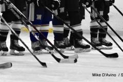 Gallery CIAC Ice Hockey; Northeastern 4 vs. Newtown 3 - Photo # 252