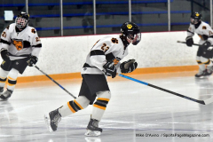 CIACT Ice Hockey D3 QFs; #1 Hand 5 vs. #8 Newtown 0 - Photo # 011