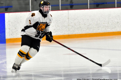 CIACT Ice Hockey D3 QFs; #1 Hand 5 vs. #8 Newtown 0 - Photo # 017