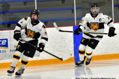 CIACT Ice Hockey D3 QFs; #1 Hand 5 vs. #8 Newtown 0 - Photo # 036
