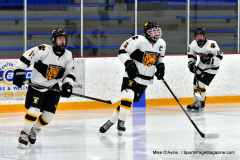 CIACT Ice Hockey D3 QFs; #1 Hand 5 vs. #8 Newtown 0 - Photo # 038