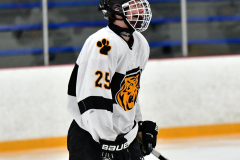 CIACT Ice Hockey D3 QFs; #1 Hand 5 vs. #8 Newtown 0 - Photo # 042