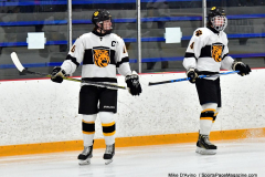 CIACT Ice Hockey D3 QFs; #1 Hand 5 vs. #8 Newtown 0 - Photo # 047