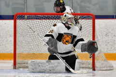 CIACT Ice Hockey D3 QFs; #1 Hand 5 vs. #8 Newtown 0 - Photo # 048