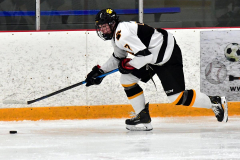 CIACT Ice Hockey D3 QFs; #1 Hand 5 vs. #8 Newtown 0 - Photo # 1000