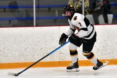 CIACT Ice Hockey D3 QFs; #1 Hand 5 vs. #8 Newtown 0 - Photo # 1002