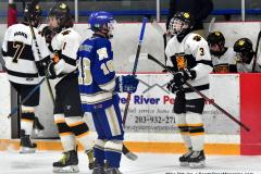 CIACT Ice Hockey D3 QFs; #1 Hand 5 vs. #8 Newtown 0 - Photo # 1008