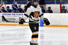CIACT Ice Hockey D3 QFs; #1 Hand 5 vs. #8 Newtown 0 - Photo # 1009