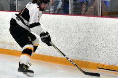 CIACT Ice Hockey D3 QFs; #1 Hand 5 vs. #8 Newtown 0 - Photo # 1022