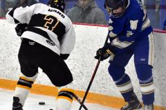 CIACT Ice Hockey D3 QFs; #1 Hand 5 vs. #8 Newtown 0 - Photo # 1036