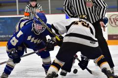 CIACT Ice Hockey D3 QFs; #1 Hand 5 vs. #8 Newtown 0 - Photo # 1051