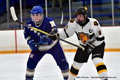 CIACT Ice Hockey D3 QFs; #1 Hand 5 vs. #8 Newtown 0 - Photo # 1077