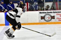 CIACT Ice Hockey D3 QFs; #1 Hand 5 vs. #8 Newtown 0 - Photo # 1079