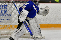 CIACT Ice Hockey D3 QFs; #1 Hand 5 vs. #8 Newtown 0 - Photo # 148