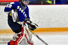 CIACT Ice Hockey D3 QFs; #1 Hand 5 vs. #8 Newtown 0 - Photo # 154
