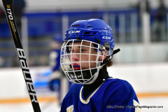 CIACT Ice Hockey D3 QFs; #1 Hand 5 vs. #8 Newtown 0 - Photo # 198