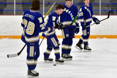 CIACT Ice Hockey D3 QFs; #1 Hand 5 vs. #8 Newtown 0 - Photo # 209
