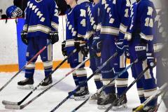 CIACT Ice Hockey D3 QFs; #1 Hand 5 vs. #8 Newtown 0 - Photo # 294