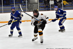 CIACT Ice Hockey D3 QFs; #1 Hand 5 vs. #8 Newtown 0 - Photo # 317
