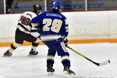 CIACT Ice Hockey D3 QFs; #1 Hand 5 vs. #8 Newtown 0 - Photo # 319