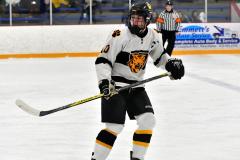 CIACT Ice Hockey D3 QFs; #1 Hand 5 vs. #8 Newtown 0 - Photo # 327