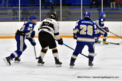 CIACT Ice Hockey D3 QFs; #1 Hand 5 vs. #8 Newtown 0 - Photo # 331