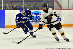 CIACT Ice Hockey D3 QFs; #1 Hand 5 vs. #8 Newtown 0 - Photo # 334