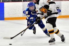 CIACT Ice Hockey D3 QFs; #1 Hand 5 vs. #8 Newtown 0 - Photo # 336