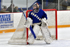 CIACT Ice Hockey D3 QFs; #1 Hand 5 vs. #8 Newtown 0 - Photo # 338