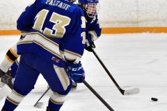 CIACT Ice Hockey D3 QFs; #1 Hand 5 vs. #8 Newtown 0 - Photo # 345