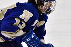 CIACT Ice Hockey D3 QFs; #1 Hand 5 vs. #8 Newtown 0 - Photo # 351