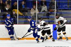 CIACT Ice Hockey D3 QFs; #1 Hand 5 vs. #8 Newtown 0 - Photo # 354