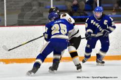CIACT Ice Hockey D3 QFs; #1 Hand 5 vs. #8 Newtown 0 - Photo # 356