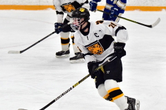 CIACT Ice Hockey D3 QFs; #1 Hand 5 vs. #8 Newtown 0 - Photo # 370