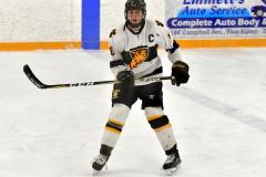 CIACT Ice Hockey D3 QFs; #1 Hand 5 vs. #8 Newtown 0 - Photo # 374