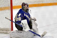 CIACT Ice Hockey D3 QFs; #1 Hand 5 vs. #8 Newtown 0 - Photo # 382
