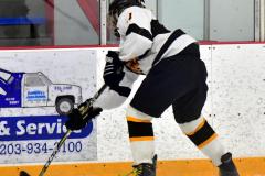 CIACT Ice Hockey D3 QFs; #1 Hand 5 vs. #8 Newtown 0 - Photo # 392