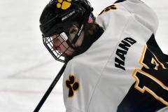 CIACT Ice Hockey D3 QFs; #1 Hand 5 vs. #8 Newtown 0 - Photo # 400