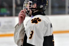 CIACT Ice Hockey D3 QFs; #1 Hand 5 vs. #8 Newtown 0 - Photo # 414