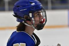 CIACT Ice Hockey D3 QFs; #1 Hand 5 vs. #8 Newtown 0 - Photo # 417
