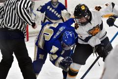 CIACT Ice Hockey D3 QFs; #1 Hand 5 vs. #8 Newtown 0 - Photo # 419