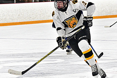 CIACT Ice Hockey D3 QFs; #1 Hand 5 vs. #8 Newtown 0 - Photo # 426